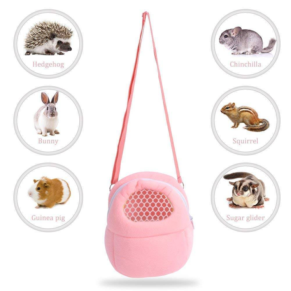 Small Pet Portable Breathable Travel Bags