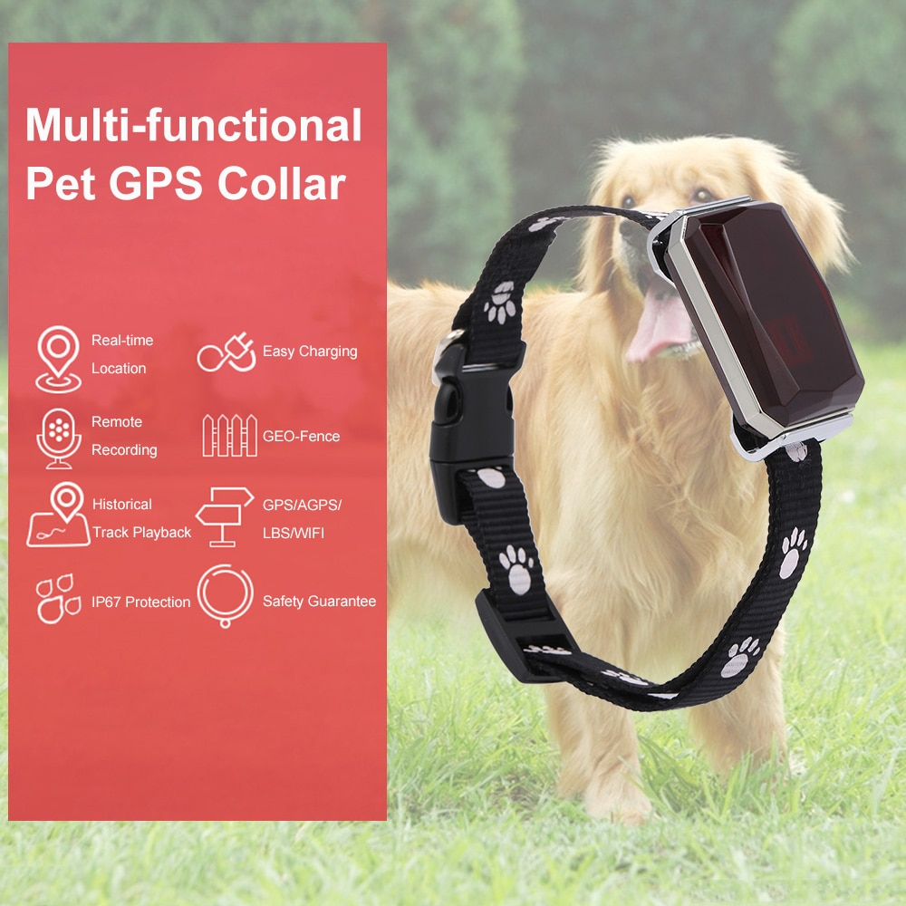 IP67 GPS Tracker for Pets