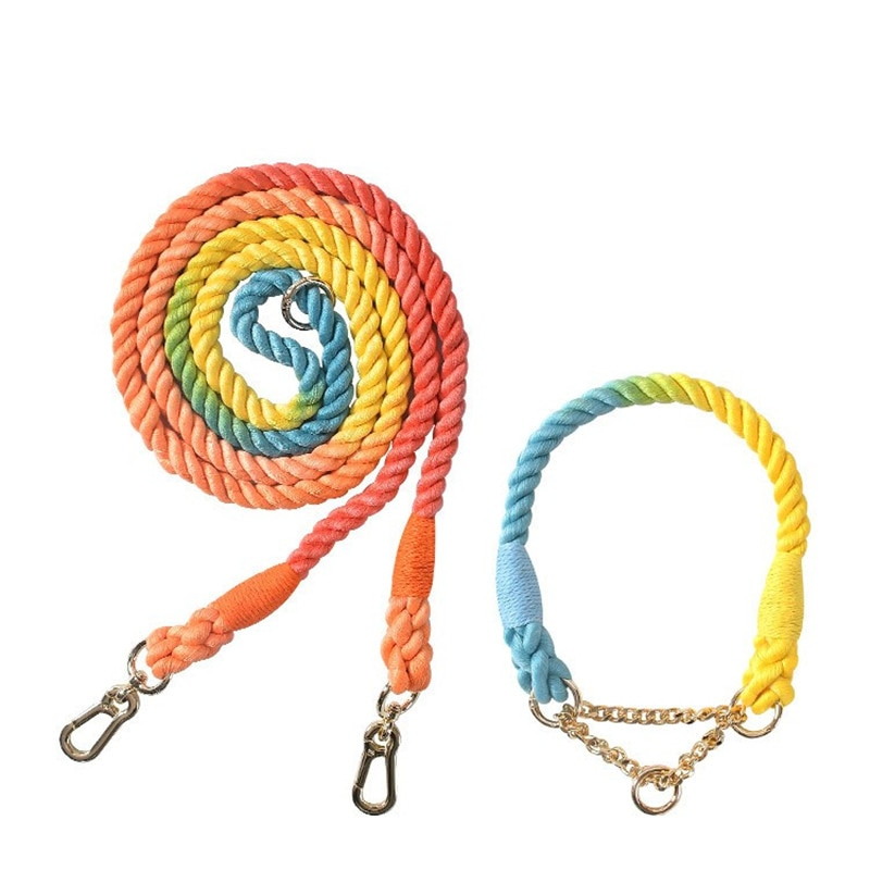 Colorful Dog Half Pinch Collars Dogs Leashes